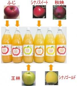 りんごジュース5種-new